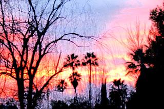 Sunsetwithfilter
