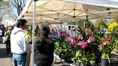 Orchidsfarmersmrkt